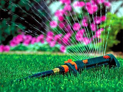 поливаем газон - polivaem gazon