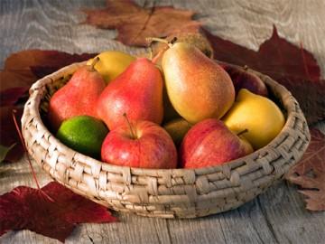 сбор поздних яблок и груш в октябре-ноябре - sbor pozdnih yablok i grush v oktyabre-noyabre