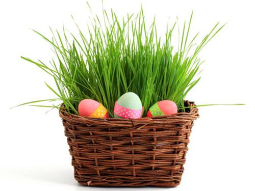 пасхальный декор: трава в корзинке - paskhalnyi dekor: trava v korzinke
