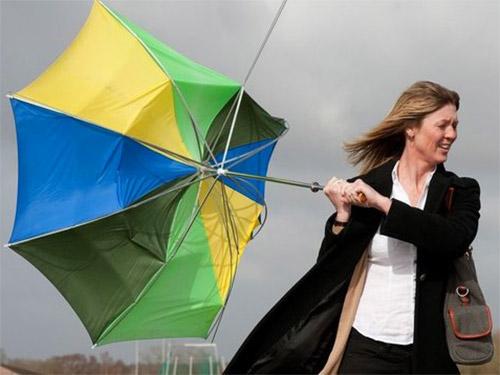 на что обратить внимание при выборе зонта